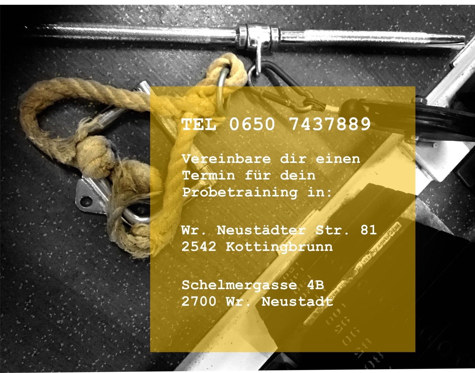 Probetraining Fitnesscenter